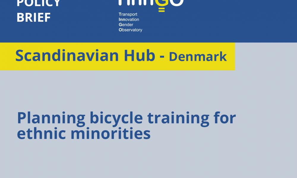 Scandinavian hub policy brief